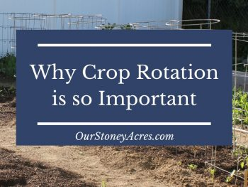 Why is Crop Rotation important?