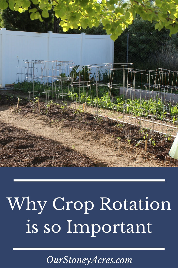 Importance of Crop Rotation