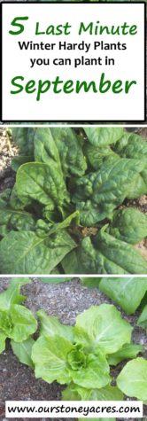 September Planting Guide #3