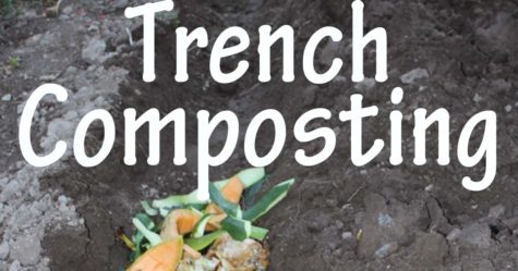 Trench Composting FB