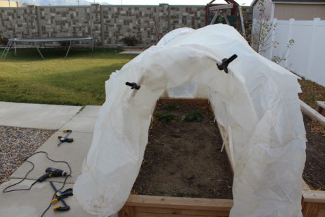 simple hoop house 7