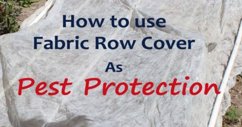 Fabric Row Cover as Pest Protection FB