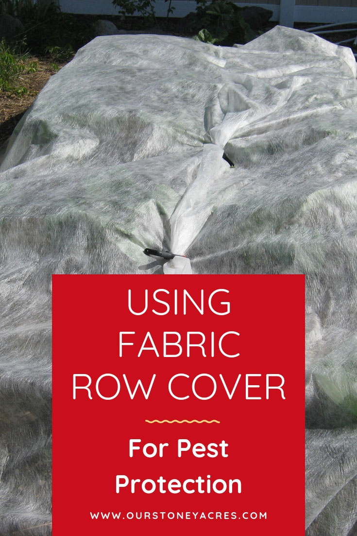 Using Fabric row cover as a pest protection
