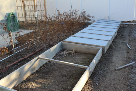 10 Hour Days Cold Frame