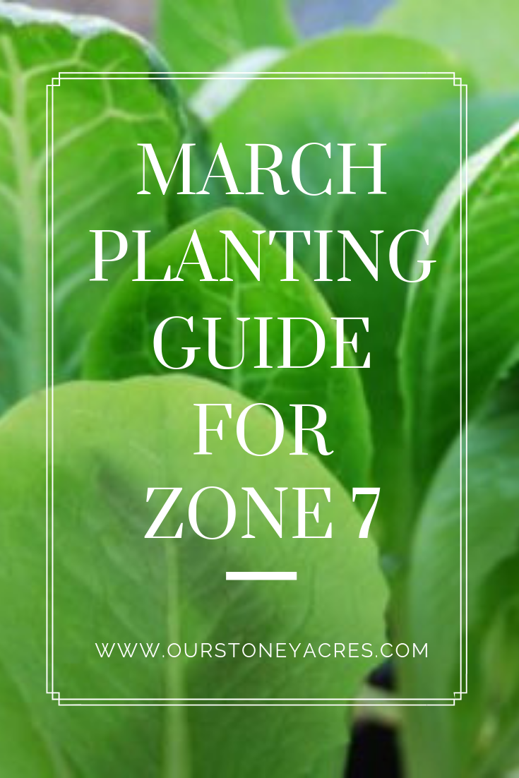 March Planting Guide for Zone 7 2019 Pin 1