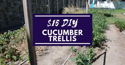 $15-DIY-Cucumber-Trellis Facebook