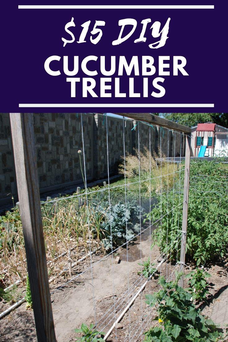 $15-DIY-Cucumber-Trellis