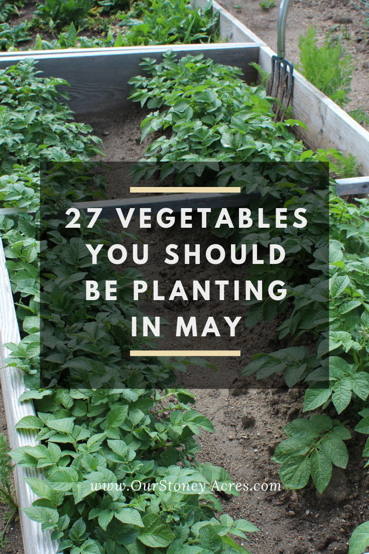 May Planting Guide pinterest