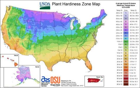 What is my garden zone