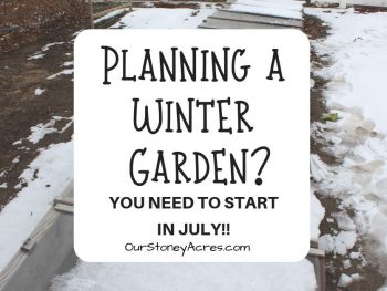 Planning a winter garden FB