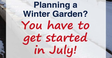 Planning a Winter Garden fb