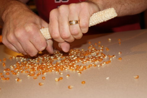 Curing Popcorn #4