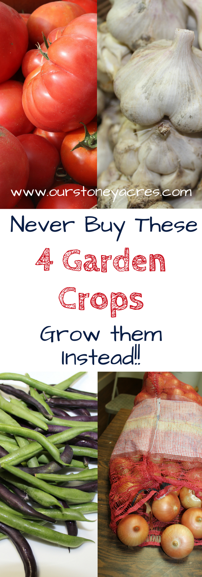 4 Vegetables to Grow not buy