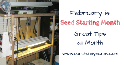Seed Starting Month FB