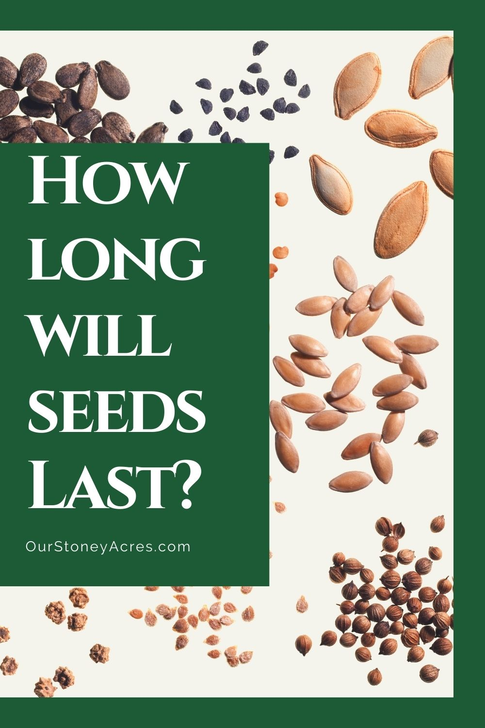 How Long will seeds last?