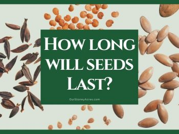 How Long will seeds last