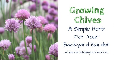 Growing Chives - Facebook Image
