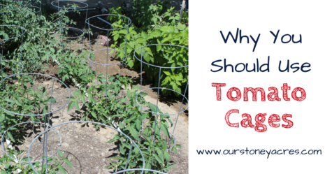 Using Tomato Cages - FB