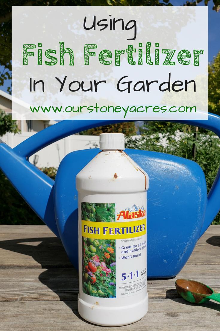 Using Fish Emulsion in your garden