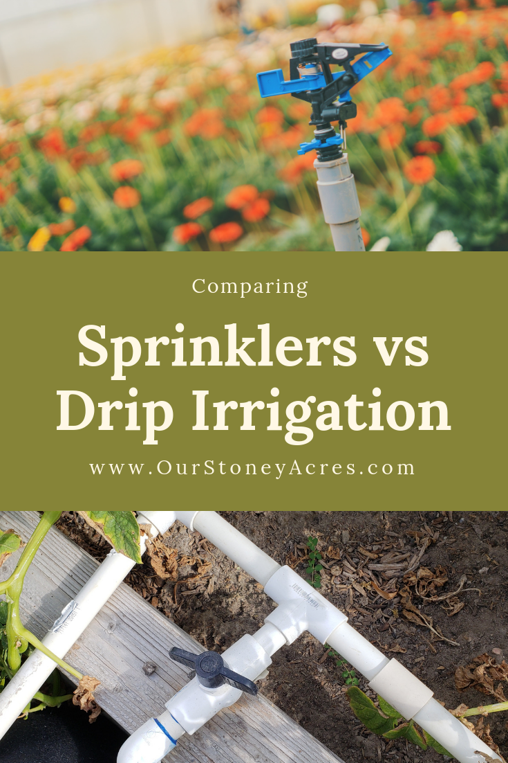Sprinkler Vs Drip Irrigation