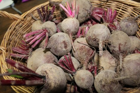 A Basket full of beets