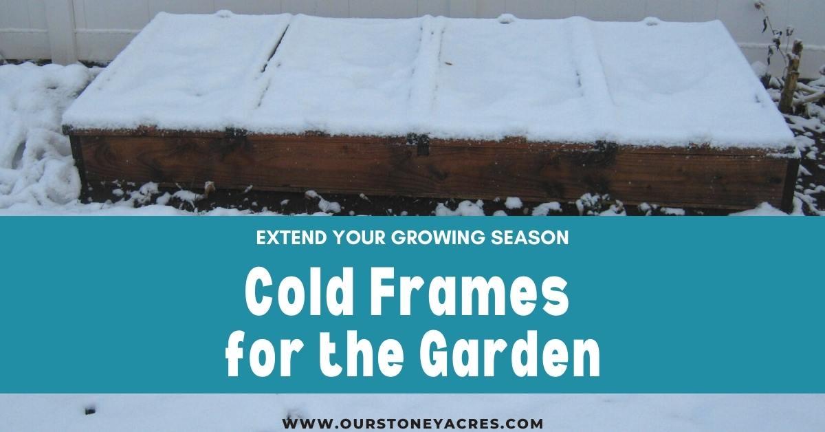 Cold Frames for Garden