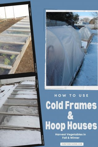How to use Cold Frames and Hoop House