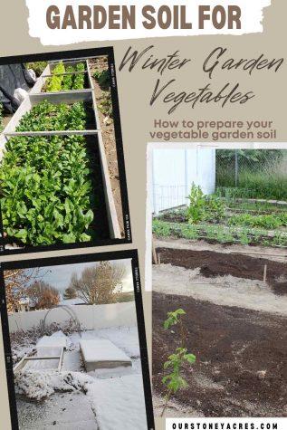 Soil for Winter Garden Vegetables