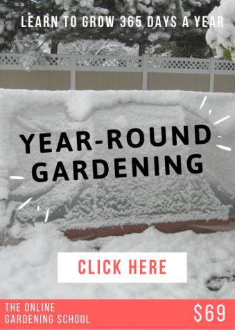 Year-Round Gardening