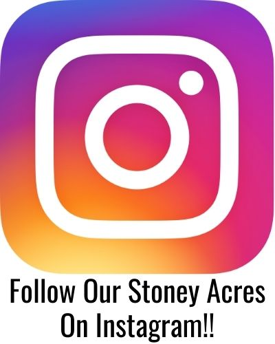 Follow Our Stoney Acres on Instagram