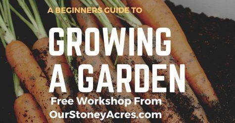 New Gardeners Free Workshop