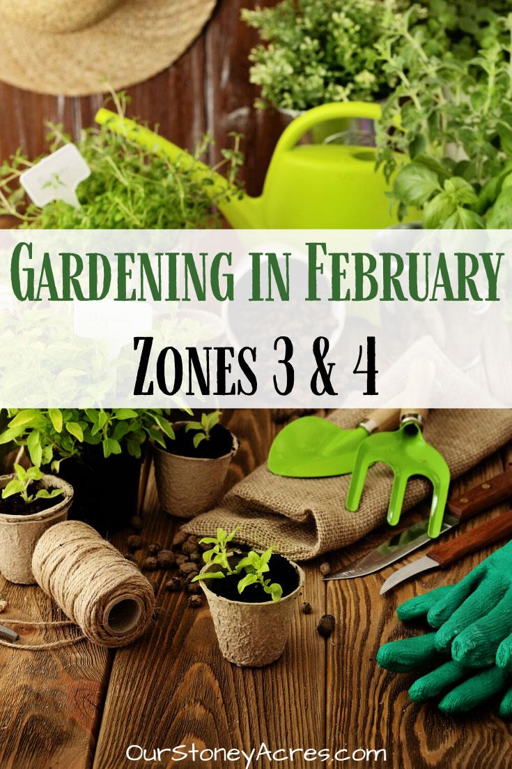 Gardening IN February Zones 3 & 4