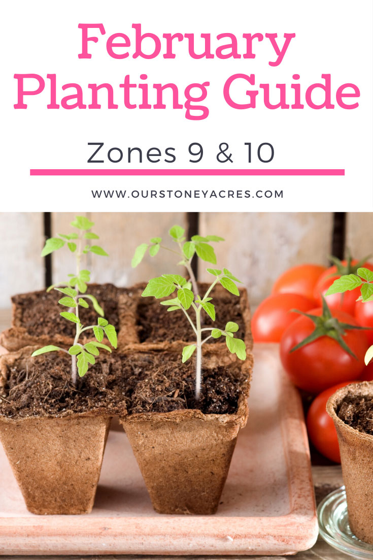 February Planting Guide zones 9 and 10