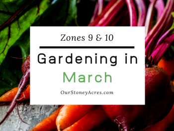 March Planting Zones 9 & 10