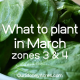 What to plant in March Zones 3 & 4