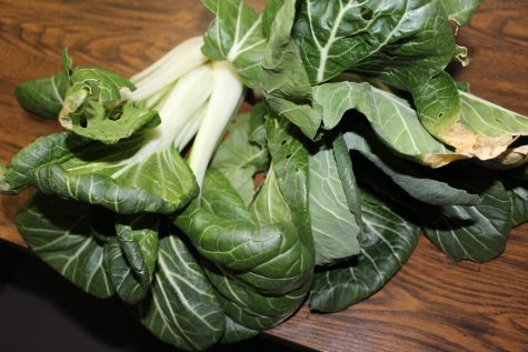 Bok Choy is one of 12 quick-growing vegetables
