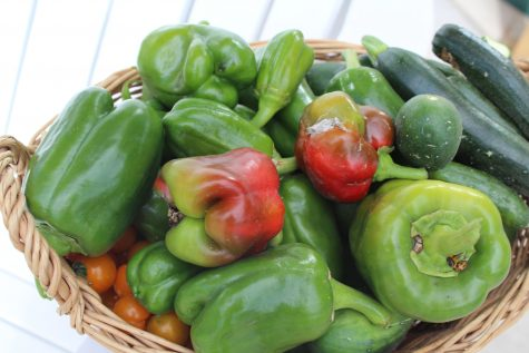 Get your peppers planting in your garden this April