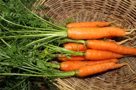 Carrots are a great crop to plant in may