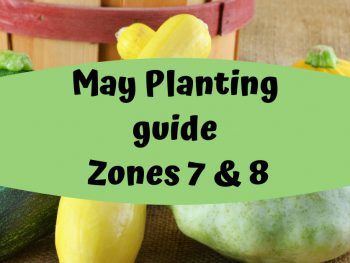 May planting list
