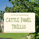 Cattle Panel Trellis