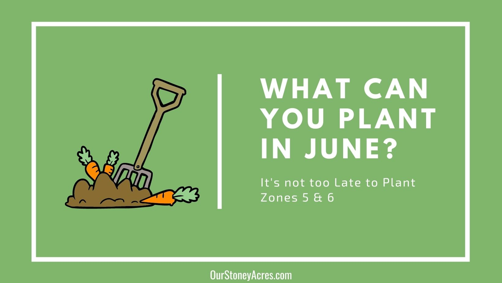 What can you plant in June