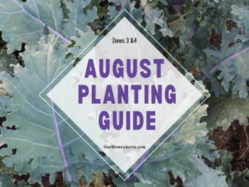 August Planting Guide Zones 3 & 4
