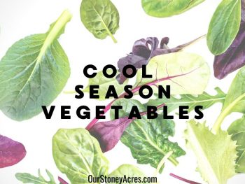 Cool Season Vegetables