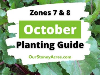October Planting Guide Zones 7 & 8