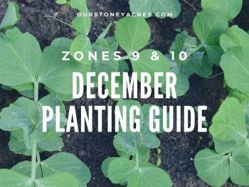 December Planting guide zones 9&10