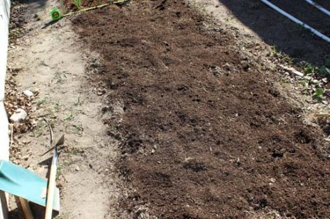 Be sure to add compost to amend your soil when you start a new vegetable garden.