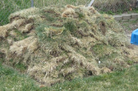 A large pile of cut sod from our new vegetable garden