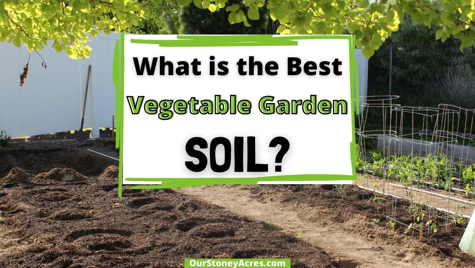 Best Vegetable Garden Soil